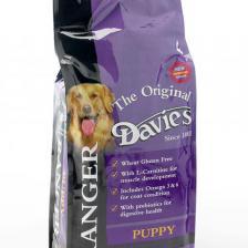 Davies Ranger Puppy